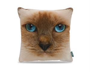 Cat Face Light Brown