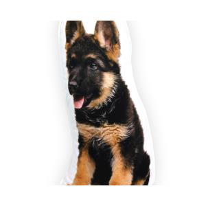German Shepherd Black